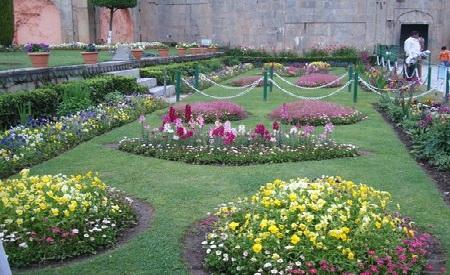 Indian Botanical Gardens Kolkata