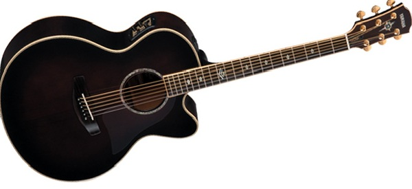 top 10 guitar brands famous guitar brands in india top list hub. Black Bedroom Furniture Sets. Home Design Ideas