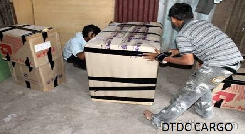 DTDC Cargo Packers and Movers