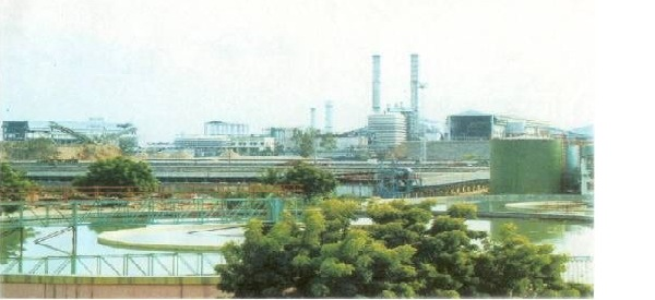 Tamilnadu Newsprint and Paper Mill